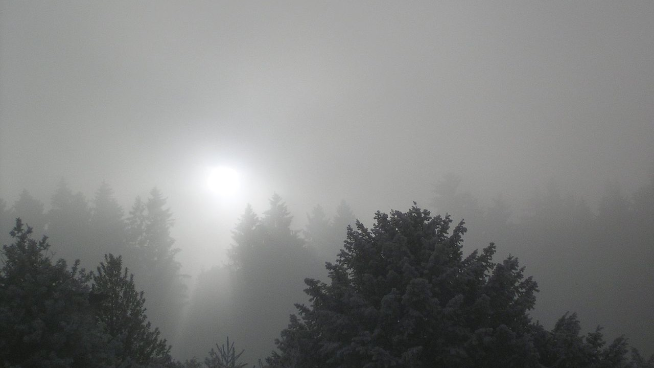 photo: LivingShadow;link: https://commons.wikimedia.org/wiki/File:Sun_shining_through_thick_Stratus.jpg;desc: Stratus cloud type with a view on the Sun.;licence:cc;